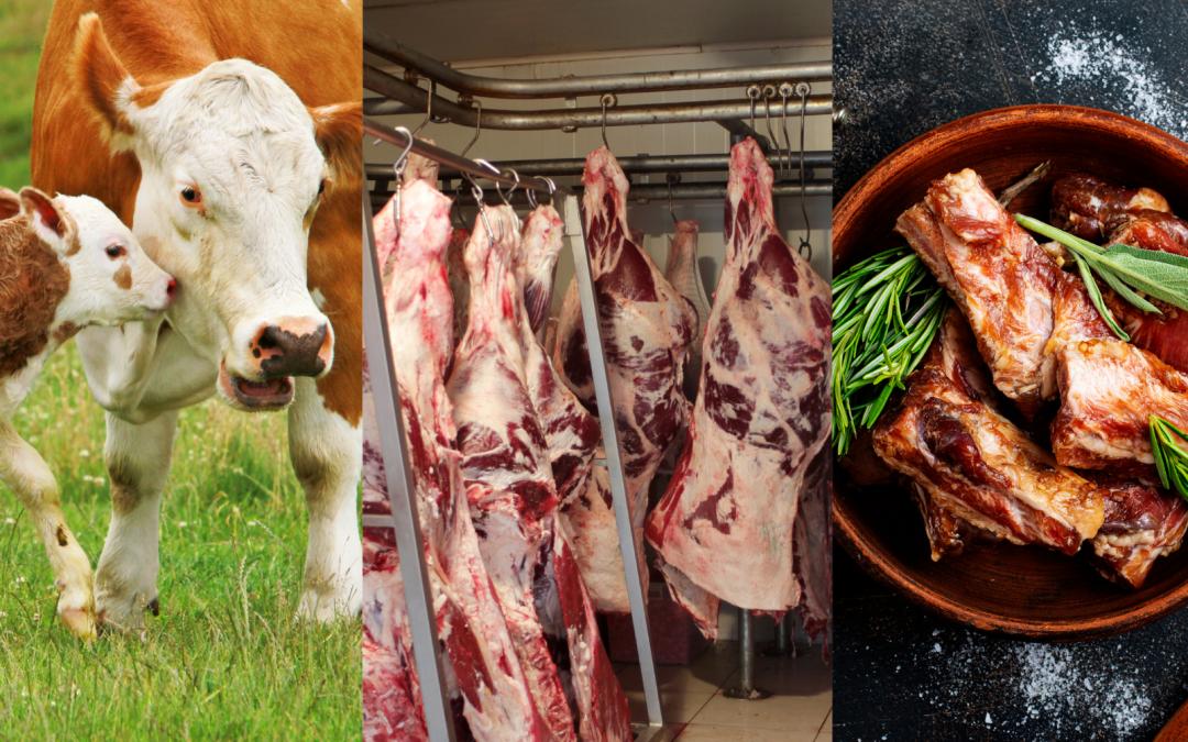 8 Fakten zum Fleischkonsum in Österreich