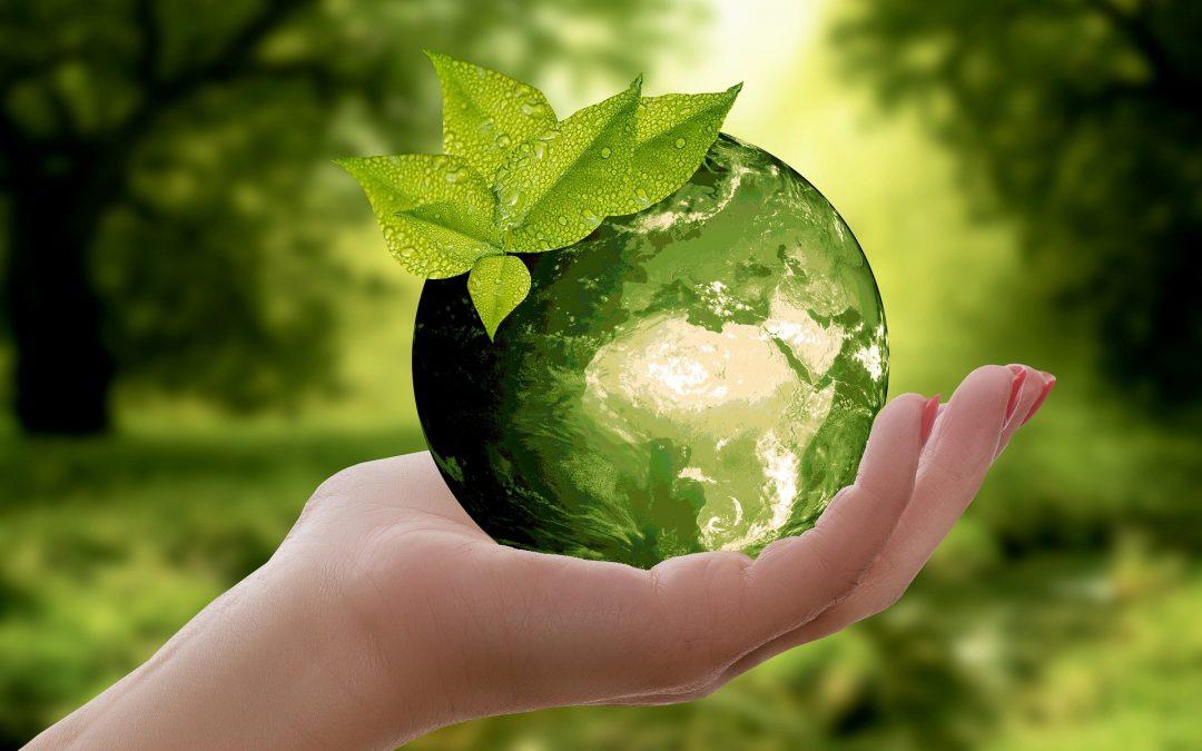 5 Energiespartipps: Geringer Aufwand, große Ersparnis